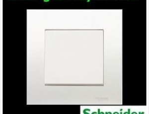 Schneider-1-Gang-1Way-Switch